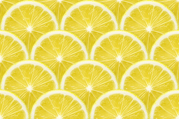 lemon slices seamless