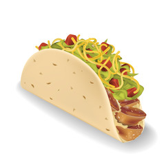 Taco vector illustration in realistic style.