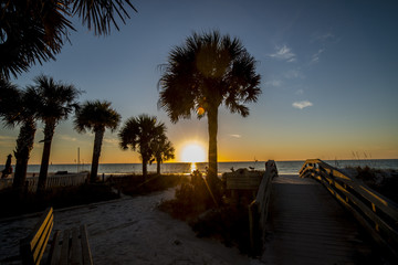 beach sunset with palm trees and sandy walkway
