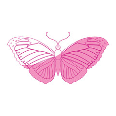 Beautiful Butterfly silhouette icon vector illustration graphic design