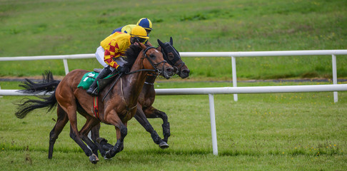 Two jockeys and race horses battling for position in the race