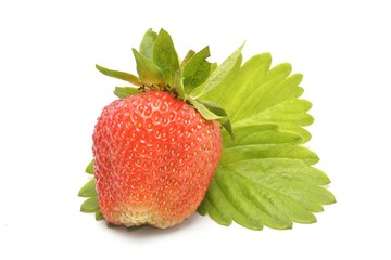 Wall Mural - Strawberries with leaves Isolated on a white background