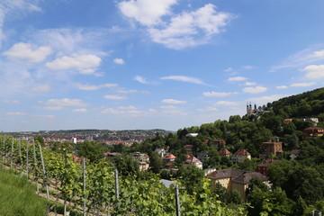 Blick auf die grüne Stadt Würzburg