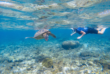 Woman snorkeling with sea turtle. Turtle and snorkel underwater.