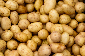 Small White Potatoes at a Farmers Market