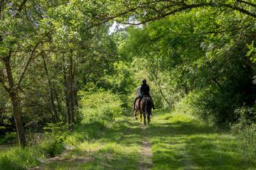 Foto auf AluDibond Reiten deux personnes de dos font de l'équitation sur un chemin verdoyant en pleine campagne le long d'une rivière