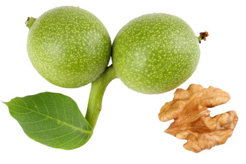 Green walnuts with leaves isolated on a white background