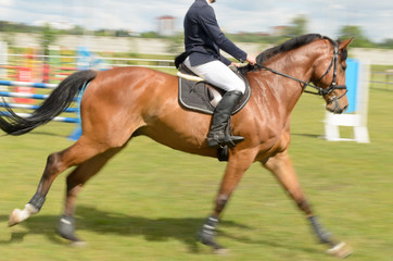 Competitions in equestrian sport with overcoming obstacles.