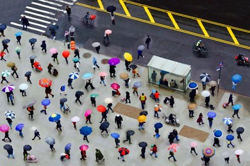 People Walking With Umbrellas On The Road
