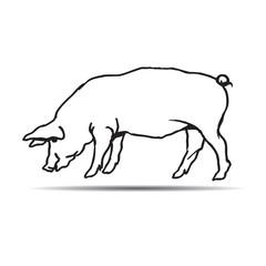 Black hand drawn pig. Vector Illustration