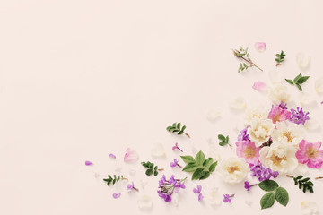 summer flowers on white background