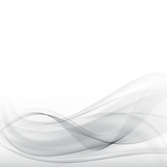 Grey waves and lines Abstract vector background gray vector eps10