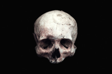 Real human skull on an isolated black background