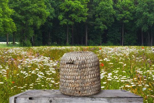 Bienenkorb im einer Blumenwiese