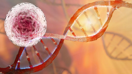 Stem Cells Research and DNA strand helix concept 3D rendering