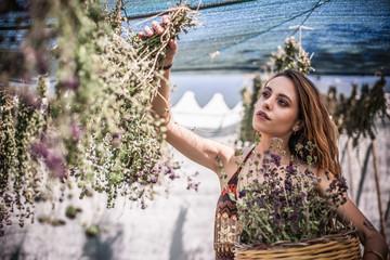 Young woman picking dried herbs, Castiadas, Sardinia, Italy
