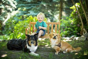 Kind liebt seine Hunde