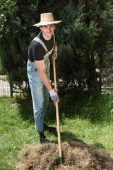 farmer moving grass with rake