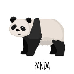 Cute Panda in flat style