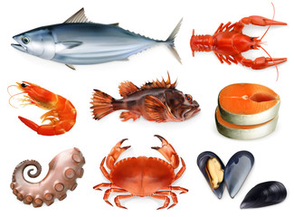 Fish, crayfish, mussels, octopus. 3d vector icon set. Sea food, realism style