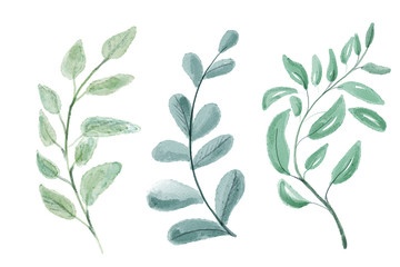 Set of watercolor leaves. Digital painting.