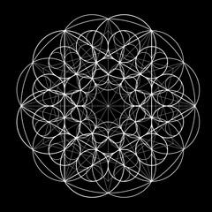 Sacred Geometry. Golden Section. Vector 10 eps