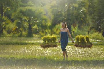 Beautiful Thailand woman working is happy,thailand,thailand woman,Thailand culture,thailand buautiful farmer