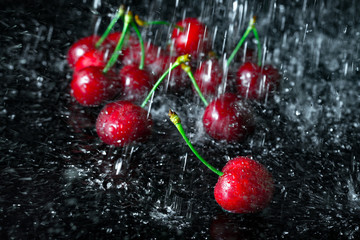 Group of cherries with falling water drops