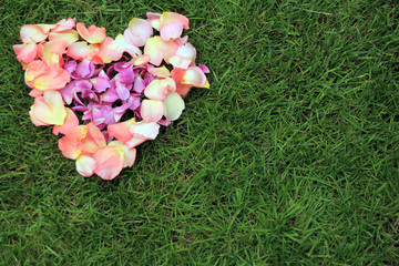 Heart shape from rose petals against grass background. Copy space is right and bottom.