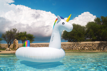 Unicorn in swimming pool - Cute swim tube