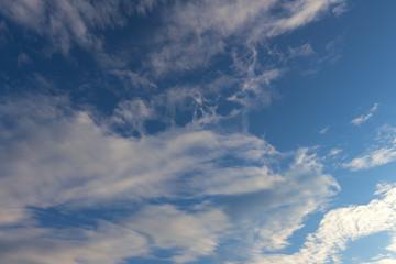 Cirrocumulus evening cloudscape