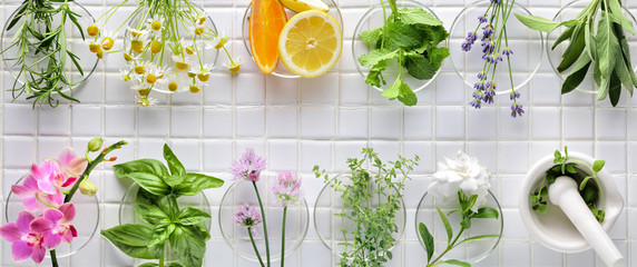 Photo sur Toile Condiment Fresh herbs
