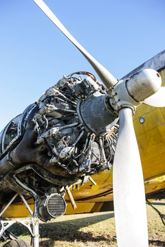 Without cowling and open to the elements, a Pratt & Whitney R-1830 Twin Wasp radial engine at an aviation junkyard in Florida