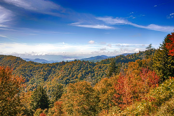 The Great Smoky Mountains National Park in Tennessee and N. Carolina