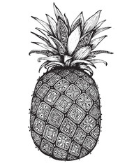 Hand drawn graphic ornate pineapple fruit.