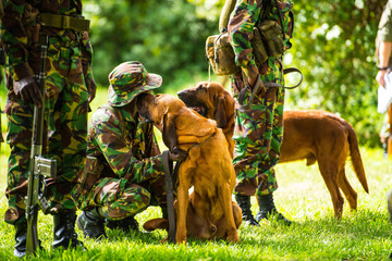 Lewa Conservancy Anti-Poaching Tracker Dog Unit, Kenya