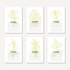 Recipe cards collection with hand drawn spicy herbs. Sketched tarragon, cilantro, parsley, rosemary, oregano, savory
