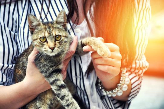 Young woman holding cute cat outdoor. Cat looking at the camera. Friendship. Love .Pets care