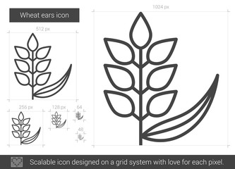 Wheat ears vector line icon isolated on white background. Wheat ears line icon for infographic, website or app. Scalable icon designed on a grid system.