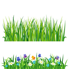 Green grass nature design elements vector illustration isolated grow agriculture nature background