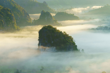 The sea of fog with forests as foreground. This place is in the Phu Lang Kha, Thailand.