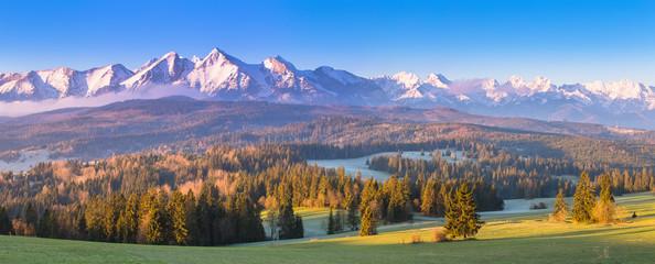 Summer alpine scene