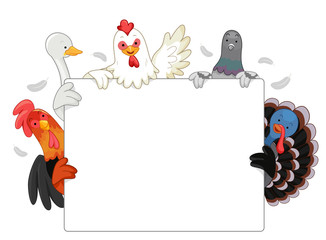 Farm Animals Poultry Board