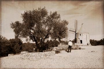 Foto auf Gartenposter Mühlen Le moulin de Daudet à Fontvieille - France