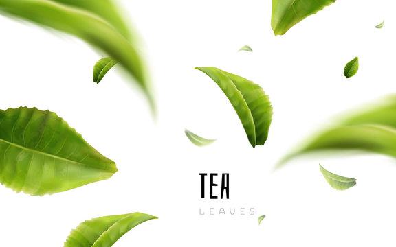 tea leaf elements