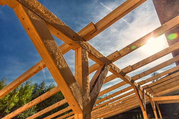 Timber-Frame Roof Structure