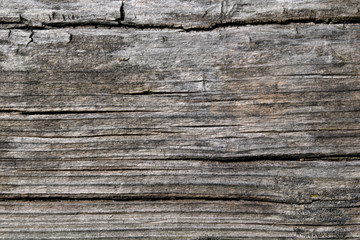 Old natural wooden background close up