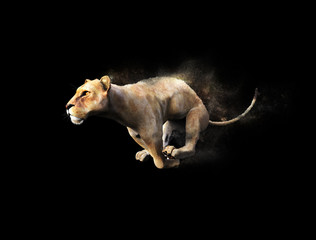 A female lion moving and running with dust particle effect on black background, 3d illustration