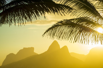 Golden sunset lights up the silhouette of palm fronds against the iconic outline of Two Brothers Mountain in Ipanema Beach, Rio de Janeiro, Brazil