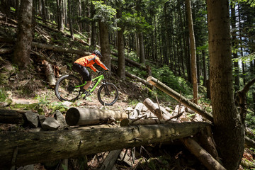 Biker is riding downhill in the old forest.